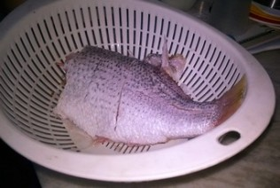 Pan Fried Whole Red Snapper