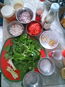 Ingredients of Kimchi Salad
